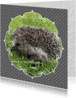 Dierenkaarten - Egeltje Egel