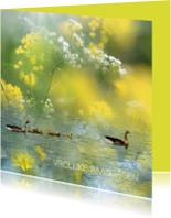 Paaskaarten - Familie gans