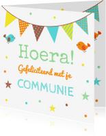 Felicitatiekaarten - Felicitatie communie confetti vlag