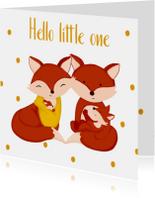 Felicitatiekaarten - Felicitatie geboorte kaartje tweede kindje