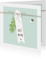 Felicitatiekaarten - Felicitatie - Label, lijnen, jongen, takje