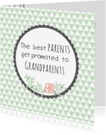 Felicitatiekaarten - Felicitatie Opa & Oma worden -WW