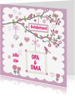 Felicitatiekaarten - Felicitatie opa en oma
