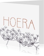 Felicitatiekaarten - Felicitatiekaart Grafisch Hoera