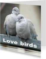 Felicitatiekaarten - Felicitatiekaart lovebirds2