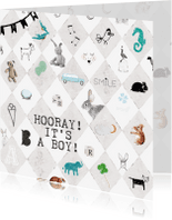 Felicitatiekaarten - Felicitatiekaartje geboorte ruit met dieren