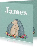 Geboortekaartjes - Geboorte Egeltjes Jongetje  - TJ