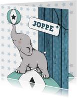 Geboortekaartjes - Geboorte olifantje bal _ IH