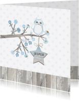 Geboortekaartjes - Geboorte uiltje tak ster