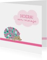 Felicitatiekaarten - Geboortefelicitatie Egeltje - HB
