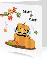 Geboortekaartjes - geboortekaart bijtjes in pompoen