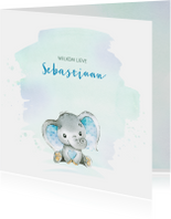 Geboortekaartjes - Geboortekaart jongen olifantje waterverf