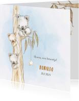 Geboortekaartjes - Geboortekaart koala-jongen met broertje en/of zusje