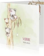 Geboortekaartjes - Geboortekaart koala-meisje met broertje en/of zusje