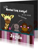 Geboortekaartjes - Geboortekaart meisje dieren HB