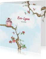 Geboortekaartjes - Geboortekaart meisje met uiltje op bloesemtak