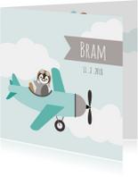 Geboortekaartjes - Geboortekaart pinguinvliegtuig - HB