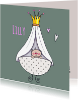 Geboortekaartjes - Geboortekaart prinses lief