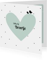 Geboortekaartjes - Geboortekaartje birdi broertje h