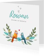 Geboortekaartjes - Geboortekaartje broertje of zusje geïllustreerde vogeltjes