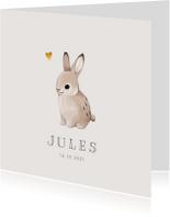 Geboortekaartjes - Geboortekaartje lief met konijntje voor jongen of meisje