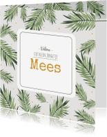 Geboortekaartjes - Geboortekaartje Mees - HM