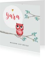 Geboortekaartjes - Geboortekaartje meisje lief met geïllustreerd uiltje