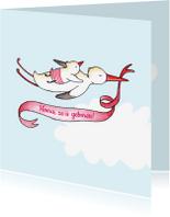 Geboortekaartjes - Geboortekaartje ooievaar lint