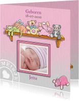 Geboortekaartjes - Geboortekaartje voor een meisje met knuffels en foto