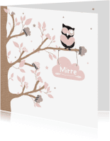 Geboortekaartjes - Geboortekaartje wolkjes uil Mirr