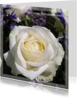 Condoleancekaarten - Gecondoleerd XXVI