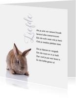 Gedichtenkaart met een lief konijntje