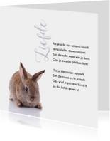 Gedichtenkaarten - Gedichtenkaart met een lief konijntje