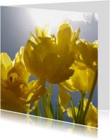 Bloemenkaarten - gele tulpen met zon