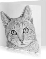 Dierenkaarten - Handgetekende lieve kat