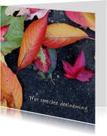 Condoleancekaarten - Herfstbladeren condoleancekaart