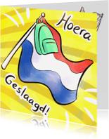 Geslaagd kaarten - Hoera geslaagd vlag