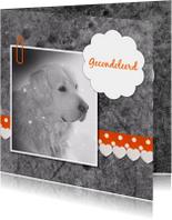 Condoleancekaarten - Hond met linten - DH