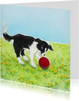 Kinderkaarten - Hondje Sendie en de rode bal