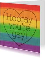 Felicitatiekaarten - Hooray you're gay1
