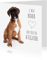 Beterschapskaarten - I'm a boxer