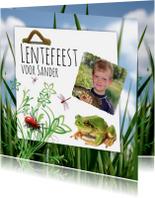 Communiekaarten - Insecten en kikker-isf