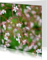 Bloemenkaarten - Kaart Roze Bloempjes