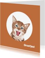 Kat steekt tong uit