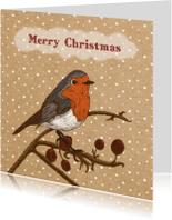 Kerstkaarten - Kerst roodborstje papier - HR