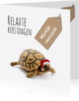 Kerstkaarten - Kerst schildpad verhuiskaart-isf