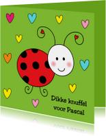 Kinderkaarten - Kinderkaart Lieveheersbeestje groen