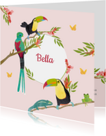 Kleurrijk geboortekaartje vogels