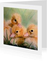 Dierenkaarten - Kuikentjes familie