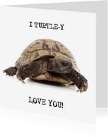 Liefde kaarten - Liefde - I Turtle-y Love You
